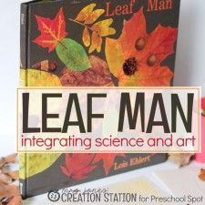 Integrating Science, Reading and Art